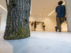 """the inner outside (bivouacs)"", opening at the nuovo spazio di casso, July the 18th, sculpture by mattia bosco - photo by giacomo de donà"
