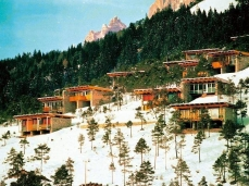 village of borca di cadore _the cottages_archive photo