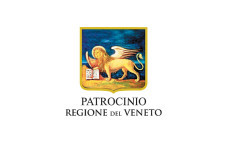 regione-veneto-229x150