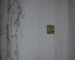 sommitale 1 - foto a. montresor