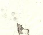 populus_20,5x12,5cm_tecnica mista su carta_2011