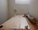 francesco bertelè, the secret garden, allestimento al piano interrato dell'edificio pizzocco, foto a. montresor