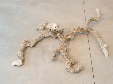 alberto scodro - moles (ciupinara) - sentieri non euclidei - foto: giacomo de donà