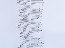 andrea bianconi - how to build a direction - brain-tooling - foto: giacomo de donàde donà