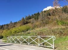 Il piccolo appezzamento vitivinicolo de ITRE a Vodo di Cadore, poco sopra alla ciclabile