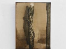 Mirko Baricchi_Wood, 40x30 cm, 2019