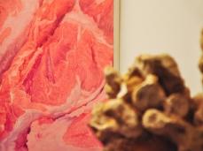 """opening """"La cura dello sguardo""""_il lavoro di Gabriele Grones_Museo Paleontologico Rinaldo Zardini di Cortina_foto Elisa Bertaglia"""