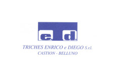 logo carpenteria triches modificato