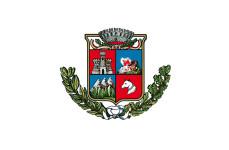 logo comune livinallongo modificato