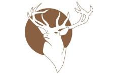 trattoria-cervo-bianco-20120714-110102